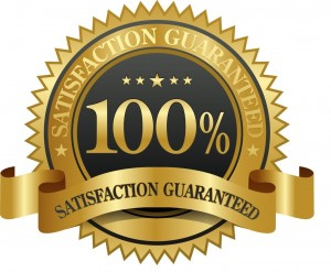 you get 190 in free gifts and discounts plus my 100 more than double your money back guarantee - Guaranteed Resumes